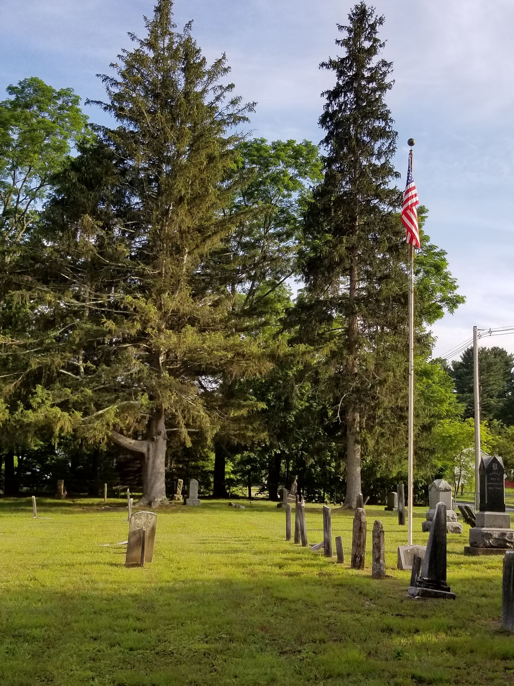 West Farms Cemetery headstones and large trees