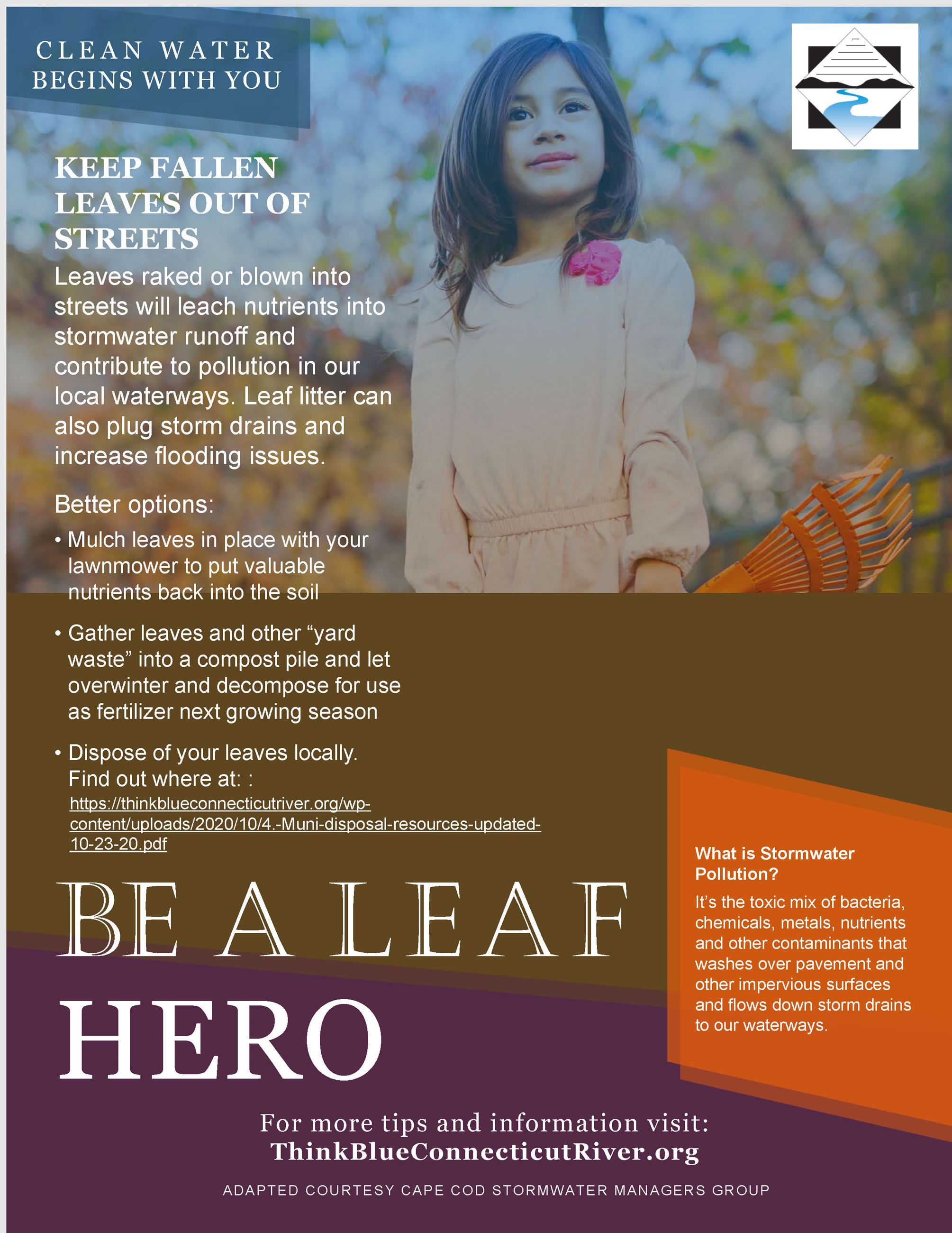Image of 2018 Leaf Litter Flyer